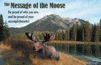 The Message of the Moose Poster